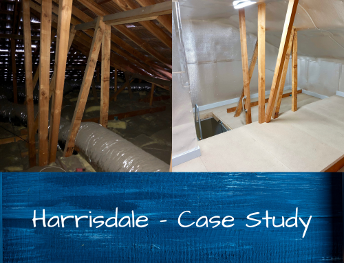 Harrisdale Home Unlocks Storage Potential With Attic Conversion